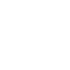 MarketingServices_Icon1